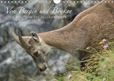 Von Bergen und Böcken (Wandkalender 2018 DIN A4 quer), Matthias Schaefgen
