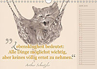 Von Katzen lernen (Wandkalender 2018 DIN A4 quer) - Produktdetailbild 6