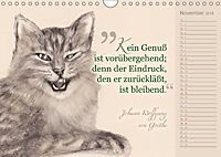 Von Katzen lernen (Wandkalender 2018 DIN A4 quer) - Produktdetailbild 11