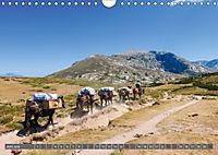 Weitwandern auf Korsika GR 20 (Wandkalender 2018 DIN A4 quer) - Produktdetailbild 6