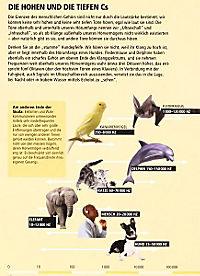 Wie viele Elefanten wiegt ein Blauwal? - Produktdetailbild 5
