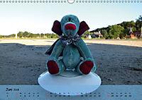 Wilde Bären - Teddybär-Porträts voller Charakter (Wandkalender 2018 DIN A3 quer) - Produktdetailbild 6