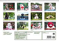 Wilde Bären - Teddybär-Porträts voller Charakter (Wandkalender 2018 DIN A3 quer) - Produktdetailbild 13