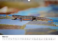 Wildes Ruhrgebiet - Momente der Stadtnatur (Wandkalender 2018 DIN A3 quer) Dieser erfolgreiche Kalender wurde dieses Jah - Produktdetailbild 3
