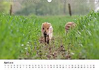 Wildes Ruhrgebiet - Momente der Stadtnatur (Wandkalender 2018 DIN A3 quer) Dieser erfolgreiche Kalender wurde dieses Jah - Produktdetailbild 4