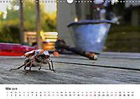 Wildes Ruhrgebiet - Momente der Stadtnatur (Wandkalender 2018 DIN A3 quer) Dieser erfolgreiche Kalender wurde dieses Jah - Produktdetailbild 5