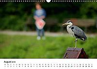 Wildes Ruhrgebiet - Momente der Stadtnatur (Wandkalender 2018 DIN A3 quer) Dieser erfolgreiche Kalender wurde dieses Jah - Produktdetailbild 8