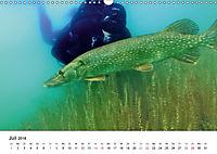 Wildes Ruhrgebiet - Momente der Stadtnatur (Wandkalender 2018 DIN A3 quer) Dieser erfolgreiche Kalender wurde dieses Jah - Produktdetailbild 7