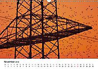 Wildes Ruhrgebiet - Momente der Stadtnatur (Wandkalender 2018 DIN A3 quer) Dieser erfolgreiche Kalender wurde dieses Jah - Produktdetailbild 11