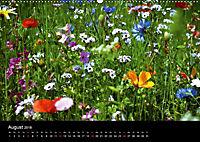 Winterberg - Sauerland - Eine Landschaft in Bildern (Wandkalender 2018 DIN A2 quer) - Produktdetailbild 8