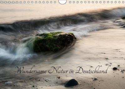Wundersame Natur in Deutschland (Wandkalender 2018 DIN A4 quer), Rainer Schund