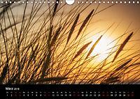Wundersame Natur in Deutschland (Wandkalender 2018 DIN A4 quer) - Produktdetailbild 3