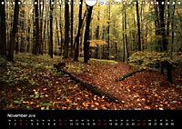 Wundersame Natur in Deutschland (Wandkalender 2018 DIN A4 quer) - Produktdetailbild 11