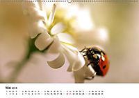Zarte Natur 2018 (Wandkalender 2018 DIN A2 quer) - Produktdetailbild 5