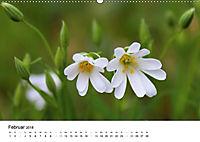Zarte Natur 2018 (Wandkalender 2018 DIN A2 quer) - Produktdetailbild 2