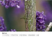 Zarte Natur 2018 (Wandkalender 2018 DIN A2 quer) - Produktdetailbild 4