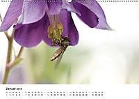 Zarte Natur 2018 (Wandkalender 2018 DIN A2 quer) - Produktdetailbild 1