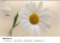 Zarte Natur 2018 (Wandkalender 2018 DIN A2 quer) - Produktdetailbild 9