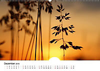 Zarte Natur 2018 (Wandkalender 2018 DIN A2 quer) - Produktdetailbild 12
