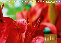 Zauberblüte - Asiatische Lilie (Tischkalender 2018 DIN A5 quer) - Produktdetailbild 2