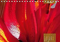 Zauberblüte - Asiatische Lilie (Tischkalender 2018 DIN A5 quer) - Produktdetailbild 7