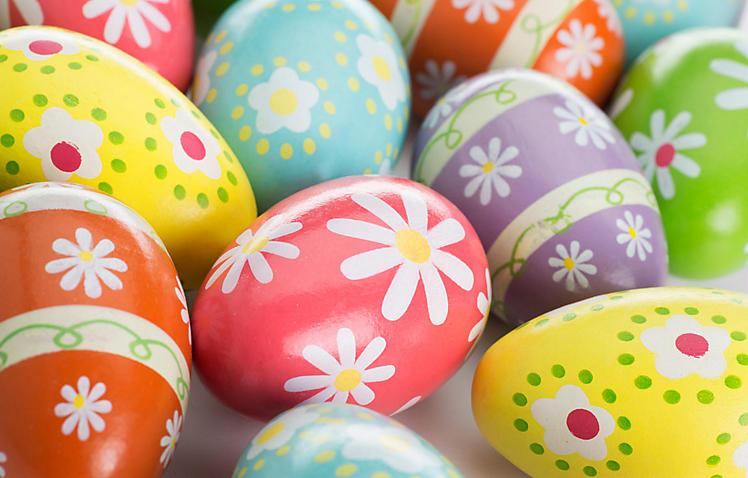Eier richtig abbinden. 😱 Leichtes Hoden abbinden. 2020-03-04