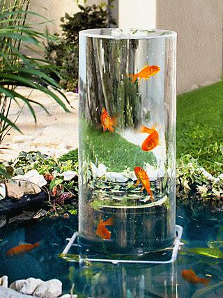 Foto Rechts Fischteich Trend Aus Japan Ein Aussichtsturm Lasst Fische Uber Der Wasseroberflache Schwimmen