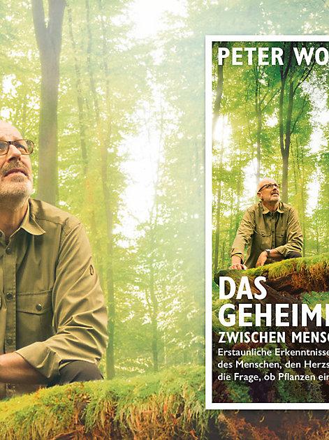 Bestseller: Das geheime Band von Peter Wohlleben