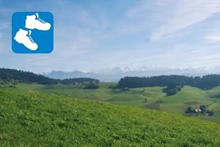Mit Alpenblick: Landiswil–Arnisäge