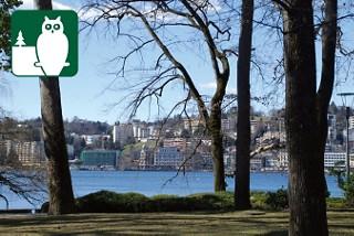 Der Parco Civico gehört zu jedem Lugano Besuch