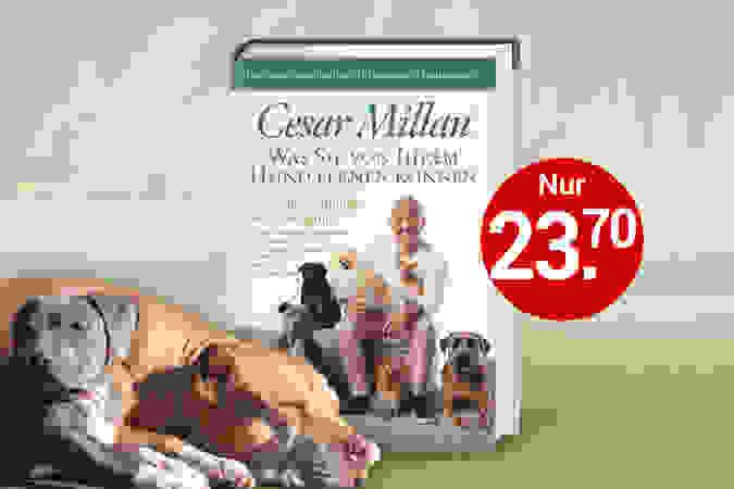 Endlich: Das neue Buch von einem der erfolgreichsten Hundetrainer der Welt!