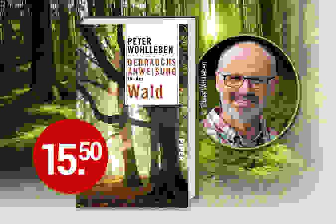 NEU: Im Wald mit Peter Wohlleben