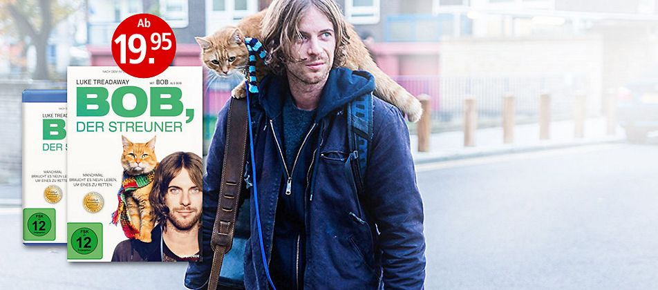 Wie eine Katze sein Leben rettete