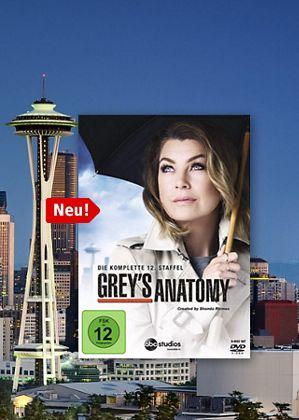 Grey's Anatomy Staffel 12