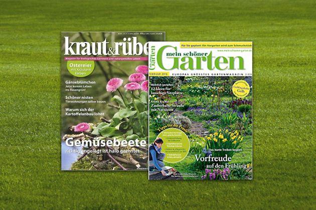 Zeitschriften - Kiosk