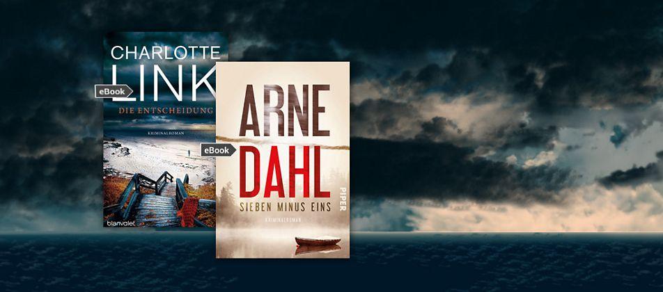 Krimi Bestseller bei uns auch als eBooks
