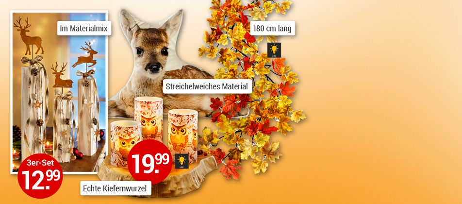 Waldidylle - Herbstdeko für Ihr Zuhause