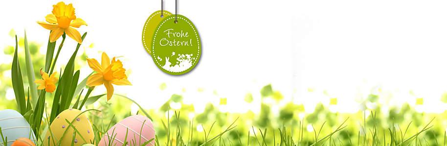 """##Ostern bei Weltbild##  Zum Osterfest gehören einige der schönsten Bräuche: Eier bemalen, Osterlämmer backen und natürlich bunte Osternester verstecken. Wer seinen Lieben zu Ostern eine besondere Freude machen möchte, abseits des klassischen Osterhasen aus Schokolade, der findet hier viele tolle Geschenk- und Dekoideen, die das Fest der Auferstehung in diesem Jahr unvergesslich machen.  {{ button href=""""/themenwelten/gewinnspiel/ostergewinnspiel"""" text=""""Zum Oster-Gewinnspiel""""}}"""