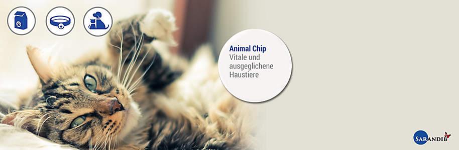 """#Animal Chip #####Vitalisiert Ihre Haustiere Die Tiere werden mit Frequenzen «versorgt», die speziell auf ihre Bedürfnisse programmiert sind. Gleichzeitig erhalten die Tiere mehr Vitalität, sie werden ausgeglichener – dies erkennt man in der Regel schnell in der Optimierung des Fells oder Gefieders. Zudem können negative Impfreaktionen vermindert werden, ohne dass die Impfwirkung beeinträchtigt wird.   {{ button href=""""/news/downloads/Animal_Flyer_151211_Weltbild_web.pdf"""" text=""""Broschüre online ansehen"""" }}"""