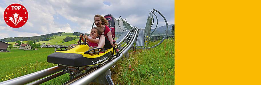 """###Kronenberg: Seilpark und Sommerrodelbahn **Im Sommer kann die Kronbergbahn im Appenzeller Bergland gleich mit fünf tollen Angeboten aufwarten: Luftseilbahn auf den Gipfel des Kronbergs (1657 m ü. M.) sowie Bobahn, Seilpark, Spielplatz und Motorikpark bei der Talstation (884 m ü. M.). Auf der Bobbahn gilt Anschnallpflicht, denn es geht auf rund einem Kilometer rasant runter.**  {{button href=""""/ausflugsziele/region/ostschweiz/kronenberg"""" text=""""Mehr erfahren""""}}"""