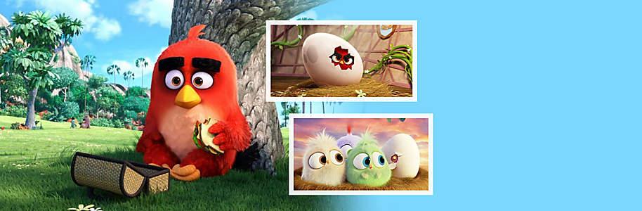 """##Angry Birds - Der Film  Millionen Menschen haben das Smartphone-Spiel """"Angry Birds"""" gespielt und somit zum erfolgreichsten Smartphone-Spiel aller Zeiten gemacht. Die weltbekannte Marke Angry Birds schafft es 2016 auf die ganz grosse Leinwand. Das Ergebnis ist ein cleveres, witziges und liebenswertes Abenteuer. Ab sofort gibt es den witzigen Film zum Game als DVD - jetzt bestellen!"""