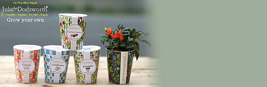 """#Keramikbecher mit Blumensamen **Jetzt in Ihrer Filiale:** Hübscher Keramikbecher gefüllt mit Blumensamen und Erde. Durch Zugabe von Wasser entsteht so auf kleinstem Raum ein blühender Blickfang. **Einfach die Samen in die Erde betten, giessen und warten.  **  Es gibt folgende Sorten: Edelwicke, Mohn, Kosmee, Tomate, Lavendel, Sonnenblume, Kornblume, Vergissmeinnicht, Kapuzinerkresse, Walderdbeere, Chili und Mauer Gänseblümchen.  {{ button href=""""/service/filialen"""" text=""""Zum Filialfinder"""" }}"""