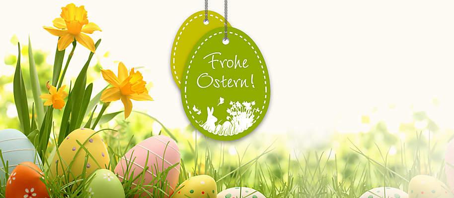 #Die besten Geschenke und kreative Ideen zu Ostern #  Freuen Sie sich mit uns auf den Frühling und auf Ostern: Ostereier bemalen, Osterlämmer selbst backen, Osterdeko basteln und Geschenke für Familie und Freunde auswählen ... <br> Wenn Sie Ihren Lieben zu Ostern eine  Freude machen möchten, finden Sie hier **tolle Geschenk- und Deko-Ideen:**  * **[Frische Frühlings- & Osterdeko](#themenwelten-ostern-layout-oster-und-fruehlingsdeko-bild-oster-und-fruehlingsdeko)** * **[Geschenke-Tipps  für Kids & Erwachsene](#themenwelten-ostern-geschenketipps-fuer-kids-bild-geschenketipps-fuer-kids)** * **[Kochen & Backen zu Ostern](#themenwelten-ostern-kochen-und-backen-zu-ostern-bild-kochen-und-backen-zu-ostern)** * **[Bastel-Spaß rund um Ostern](#themenwelten-ostern-kreatives-und-basteln-rund-um-ostern-bild-kreative-u-basteln-rund-um-ostern)** * **[Alles für den Garten](#themenwelten-ostern-alles-fuer-den-garten-text-alles-fuer-den-garten)** * **[Lese-Highlights für Erwachsene](#themenwelten-ostern-lese-highlights-fuer-erwachsene-bild-lese-highlights-fuer-erwachsene)** * **[Bücher-Tipps für Kinder & Jugendliche](#themenwelten-ostern-buecher-tipps-fuer-kinder-und-jugendliche-bild-buechertipps-fuer-kinder-und-jugendliche)** * **[DVD- und Musik-Highlights u.v.m.](#themenwelten-ostern-dvd-higlights-zu-verschenken-dvd-highlights-zum-verschenken)**    Außerdem erwartet Sie ein **tolles Gewinnspiel - Eier finden, Cabrio gewinnen!** Machen Sie sich auf die Ostereier-Suche und nutzen Sie Ihre Gewinnchance auf Preise im Gesamtwert von **über 70.000.- €!  [Hier geht's zum Gewinnspiel!](#themenwelten-ostern-layout-gewinnspiel-aktion)**
