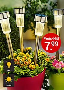 Bild Solargartenstecker-Set Edelstahl