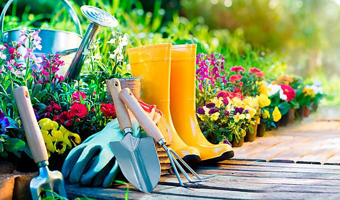 Gartengestaltung | Ideen Und Angebote Bei Weltbild Gartenarbeit Gartengestaltung Der Garten Im Fruhling