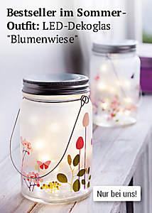 LED-Dekoglas Blumenwiese