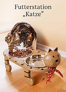 Bild Futterstation Katze