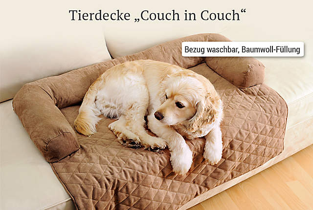 """Bild Tierdecke """"Couch in Couch"""""""