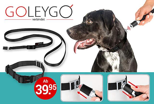GoLeyGo Hundeleine und Halsband