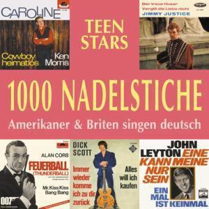 1000 Nadelstiche Vol.05,Teen Stars, Diverse Interpreten